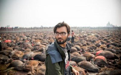 UPDATE: Gadhimai Animal Sacrifice